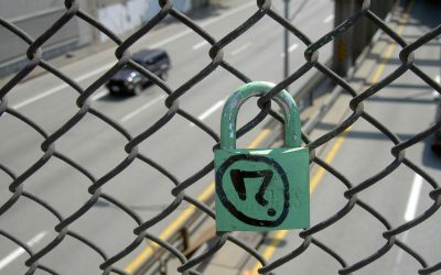 Technical Penguins: The SSL Green Padlock and What it Means for Your Website